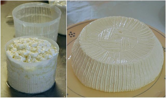 Primo Sale cheese