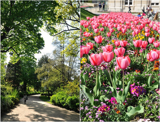 Grand Foyer Jardin Du Luxembourg : Jardin du luxembourg for a picnic in paris food lover s