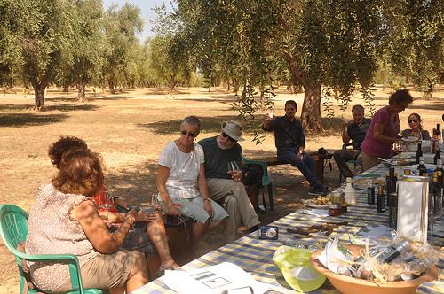 Picnic under the olive grove in Puglia