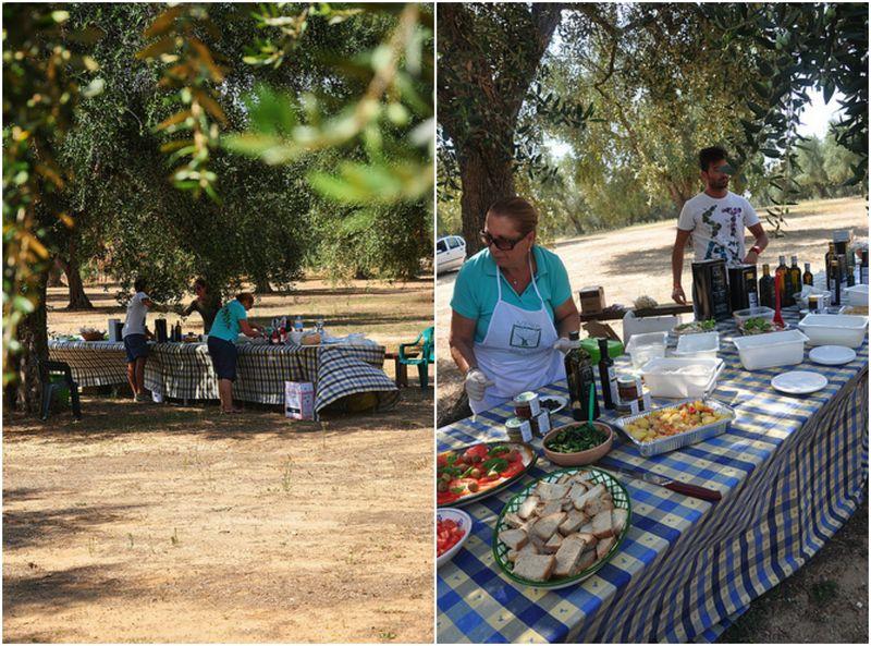 Picnic in Puglia under the olive groves