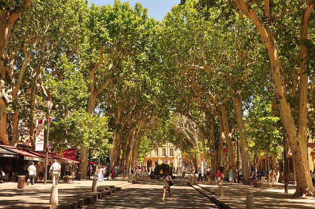 The Cours Mirabeau in Aix
